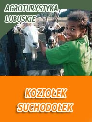 Agroturystyka w Lubuskiem